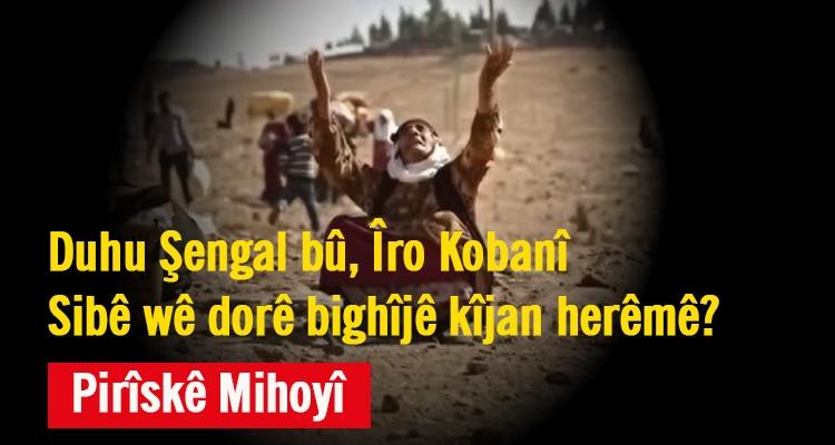 Duhu Şengal bû, îro Kobanî, sibê wê dorê bighîjê kîjan herêmê?