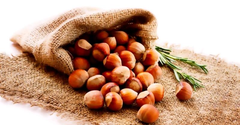 Hazelnut, Nut, Haselnnüsse, Nüsse û bi erebî Bandaq, bi tirkî jî Fındık...